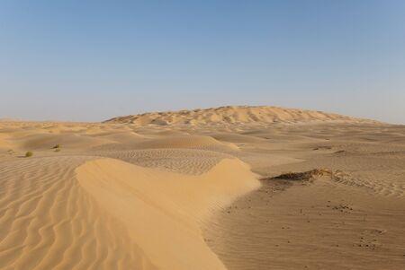 arabic desert: The sandy desert in the west Oman Stock Photo