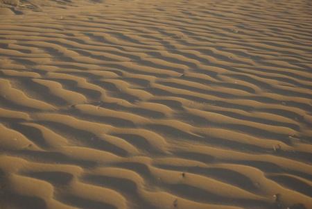 Sandy corrugation in the Arabian Desert photo