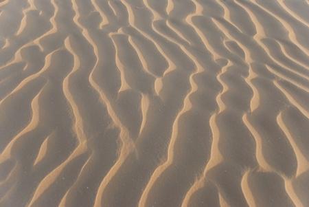 corrugation: Sandy corrugation in the Arabian Desert Stock Photo