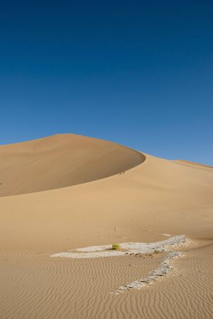 The sandy desert in the west Oman photo