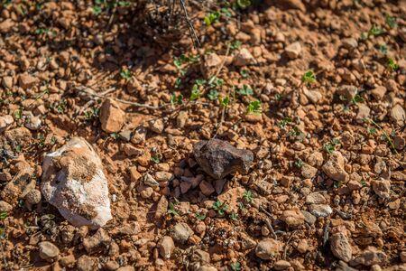 meteorites: Mundrabilla Meteorite Stock Photo