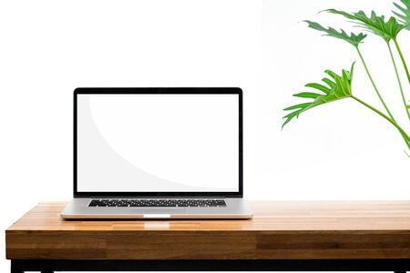 Laptop blank screen on wooden table green plant on white background