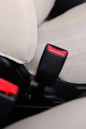 safety belt: closeup automobile safety belt (seat belt)