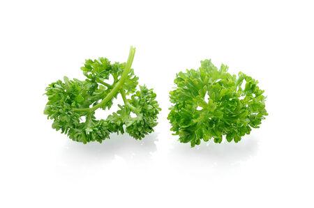 green fresh parsley isolated on white background  photo