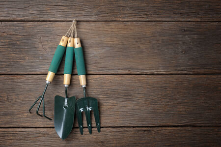 gardening tools on wooden plank background photo