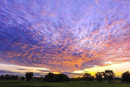 skyscape: skyscape, sunrise in cloudy day