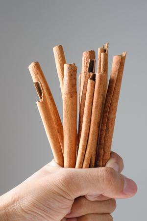 asian flavors: fragrant cinnamon sticks in hand