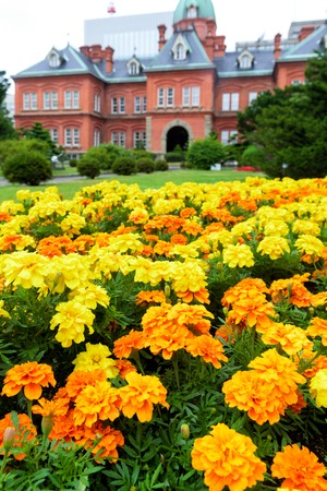 sapporo: HOKKAIDO, JAPAN - JULY 25, 2015: The garden in front of former Hokkaido Government Office in Sapporo, Japan.