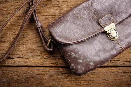 filthy: mold on old brown leather bag