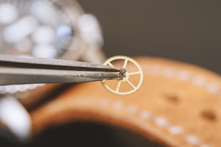 escapement: closeup the parts of automatic wristwatch, gear