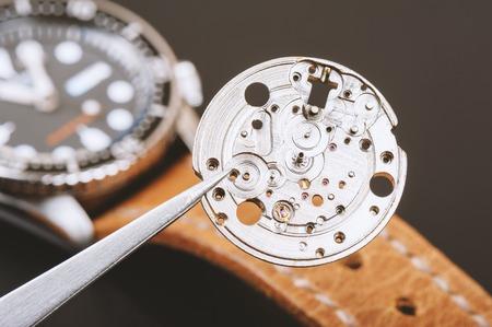 escapement: closeup the parts of automatic wristwatch, Case