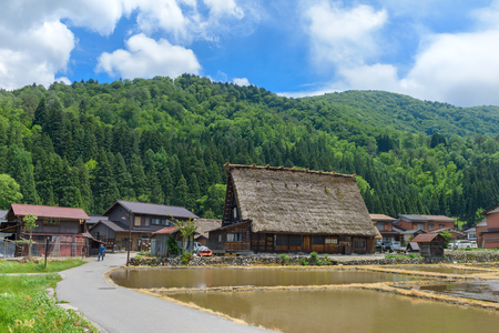 gassho zukuri: Shirakawago (Shirakawa Village) in summer. Shirakawago is a village located in Gifu Prefecture, Japan.