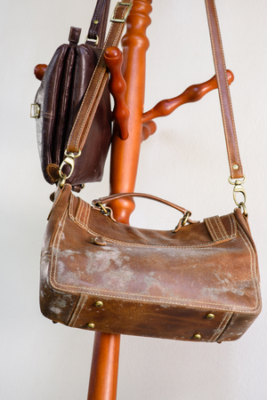 mold on old brown leather bag, fungus on leather bag Stock Photo