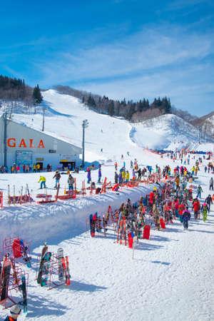 NIIGATA, JAPAN - FEBRUARY 22, 2019: Tourists enjoy to play ski and snowboard at Gala Yuzawa Ski Resort, a large of ski resorts located in Niigata, Japan. 新聞圖片
