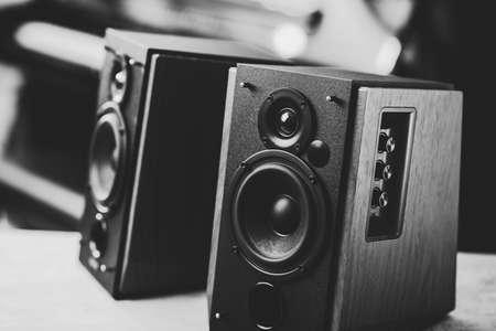 Bookshelf speaker system for home entertainment. 免版税图像 - 167140997