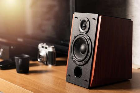 Bookshelf speaker system for home entertainment. 免版税图像 - 166680300