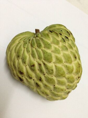 annona squamosa: annona squamosa the best fruit