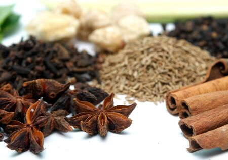 clove and cinnamon in group of spices Stock Photo - 7822372