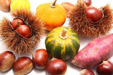 harvests: Autumn harvests, japanese chestnut, pumpkin, sweet potato