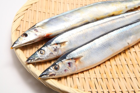 Saury on bamboo basket close up shoot Stock Photo - 11534861