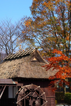 mill valley: wheel mill in the country in autumn japan