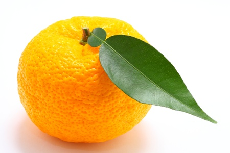 Citron on white background close up shoot