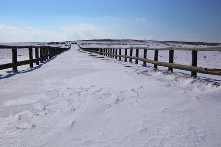Snowy road in utsukushigahara plateau, nagano japan