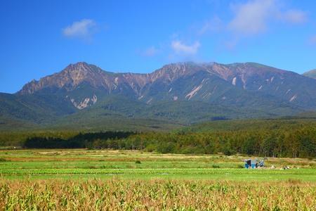 Vegetable field and mountain in japan, Mt.Yatsugatake photo