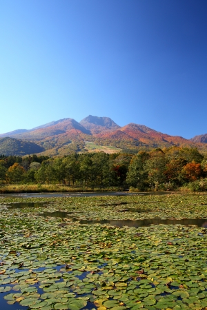 Mt  Myoko and lotus pond in autumn, Niigata, Japan photo