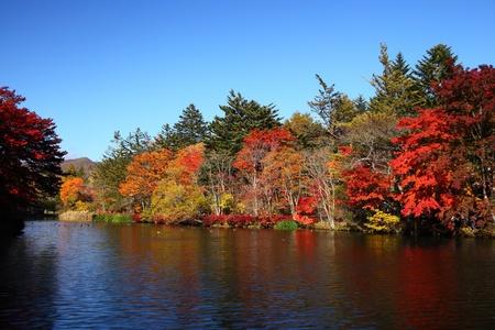 Kumoba pond with red leaves in Karuizawa, Nagano, Japan