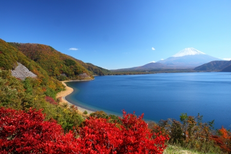 Mt  Fuji and Lake Motosu in autumn, Yamanashi, Japan photo