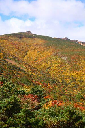 fukushima: Mt  Adatarayama of autumn leaves, Fukushima, Japan