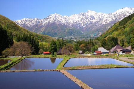 Japan Alps and terrace paddy field, Hakuba village Aoni, Nagano, Japan photo