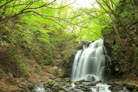 waterscape: Waterfall of fresh green, Name is Asamaootaki, Gunma, Japan