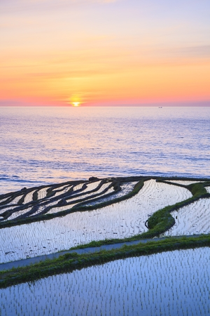 hokuriku: Rice terraces at sunset, Shiroyone senmaida,Ishikawa, Japan Stock Photo