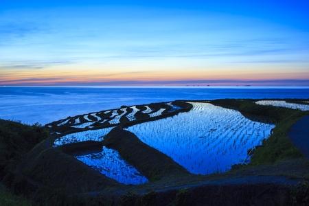 ishikawa: Rice terraces at twilight, Shiroyone senmaida, Ishikawa,Japan