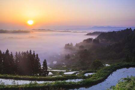 Zonsopgang vanaf zee van wolken en rijst terrassen, Hoshitouge, Niigata, Japan