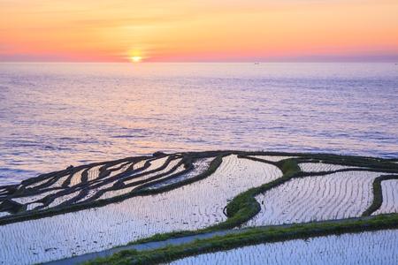 ishikawa: Rice terraces at sunset, Shiroyone senmaida,Ishikawa, Japan Stock Photo