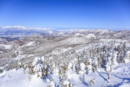 soft peak: Shiga Kogen resort in winter, Nagano, Japan