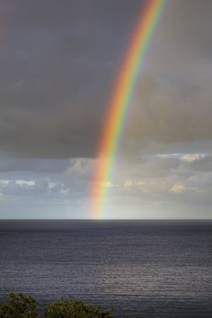Rainbow rising from the sea