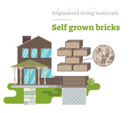 Self Grown Bricks - Engineered Living Material
