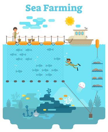 Seelandschaft - Aquakultur-Konzeptillustration mit wachsenden Fischen und anderen Meeresprodukten Unterwasser Standard-Bild - 87917068