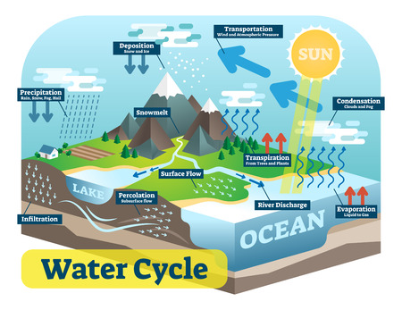 Water cycle graphic scheme, vector isometric illustration with water bodies and geological relief.