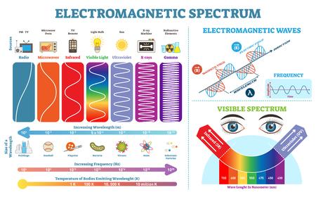 Collection complète d'informations sur le spectre électromagnétique, diagramme d'illustration vectorielle avec longueurs d'onde, fréquence et température. Schéma de structure des vagues. Éléments d'infographie de physique éducative. Vecteurs