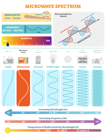 Electromagnetic Waves: Microwave Spectrum. Vector illustration diagram with wavelength, frequency, harmfulness and wave structure. Science educational information. Info poster.