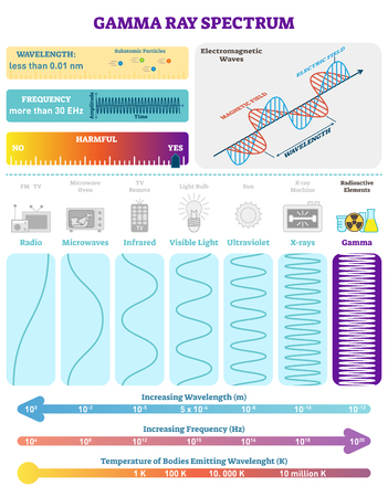 Electromagnetic waves radioactive gamma rays spectrum vector illustration diagram science educational information. Ilustração