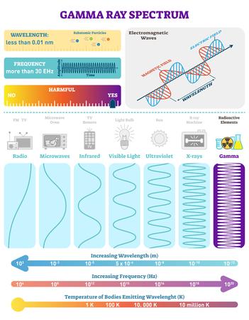 Les ondes électromagnétiques des rayons gamma radioactifs spectre illustration vectorielle diagramme science information éducative. Vecteurs