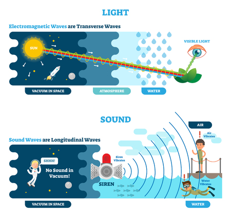 Longitudinal and Transverse wave type, vector illustration scientific diagram with wave structure and difference. Sonic and visual perception principle. Vettoriali