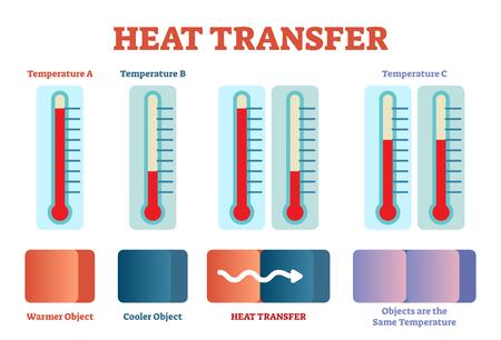 Cartel de física de transferencia de calor, diagrama de ilustración vectorial con etapas de equilibrio de calor. Cartel educativo con termómetro.