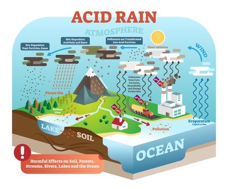 Ciclo di pioggia acida nell'ecosistema della natura, scena infografica isometrica, illustrazione vettoriale. Pericoli nocivi dell'equilibrio ambientale globale del pianeta terra. Inquinamento in natura.